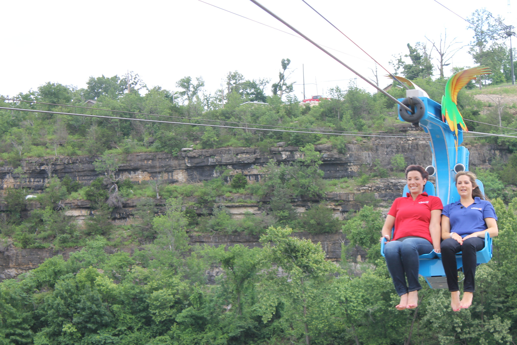 Where to Go Ziplining in Branson