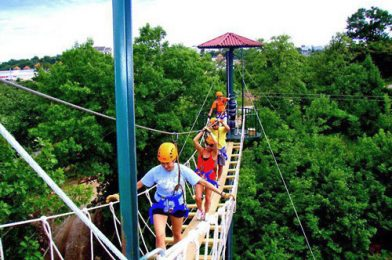 Need a Healthy Dose of Adrenaline? Try the Ziplines in Branson